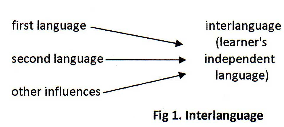 first language acquisition theories essays The theory of interlanguage is very important to the process of second language  acquisition, because it was the first major attempt to explain this process, and.